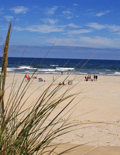 strand.groot